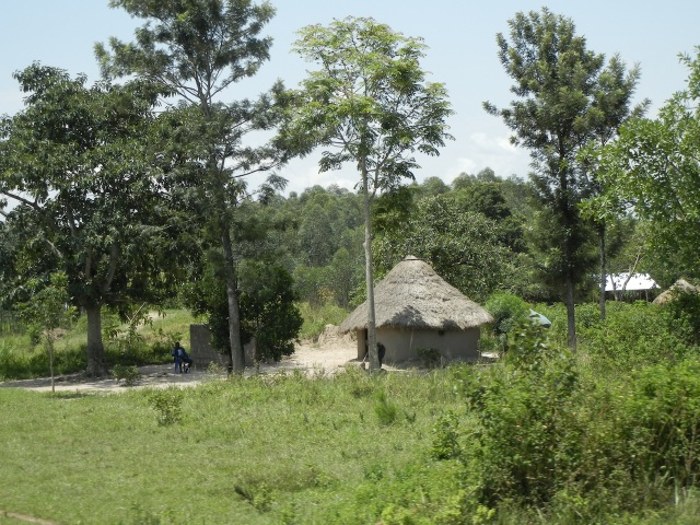 A traditional Ugandan hut along the road to Eldoret, Kenya