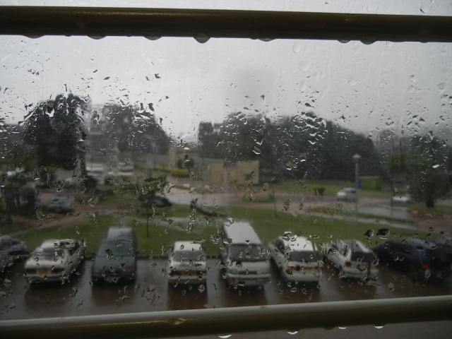 A rainy view from my office window, overlooking the parking lot.  This has been a common scene the past 2 days.