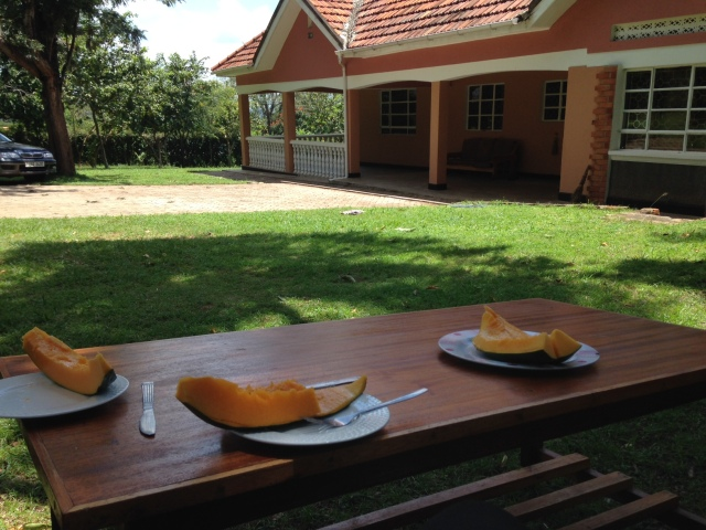We ate delicious papaya on the lawn, purchased right from the local farms along the road to Tororo