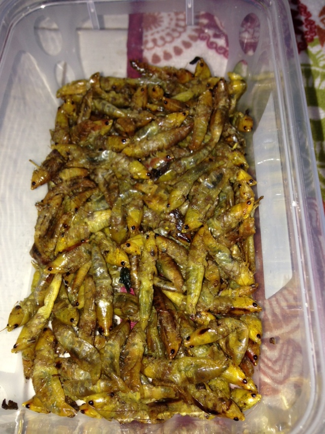 Grasshoppers: fried and salted they are crispy little critters- just pop them in your mouth but try not to look at the eyes!