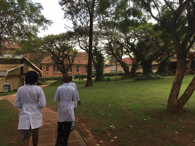 Edel, Linda and Joseph walk across the lush Nsambya Hospital Campus