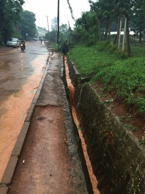 IMG_6575-massive rain