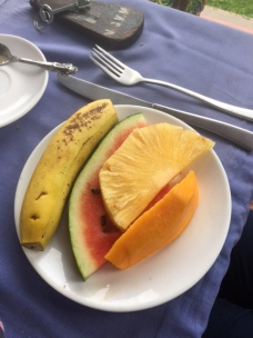 This is our usual delicious fruit plate for breakfast- and today we had MANGO!